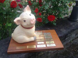 Der DUYC hat ein neues Schwein 1